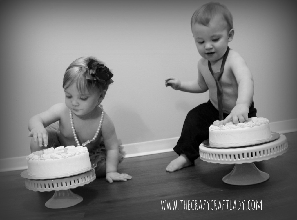 Twin Smash Cakes - The Crazy Craft Lady