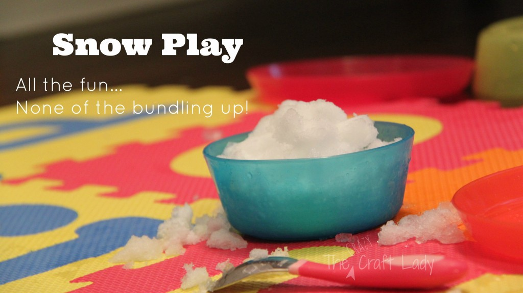 Indoor Snow Play