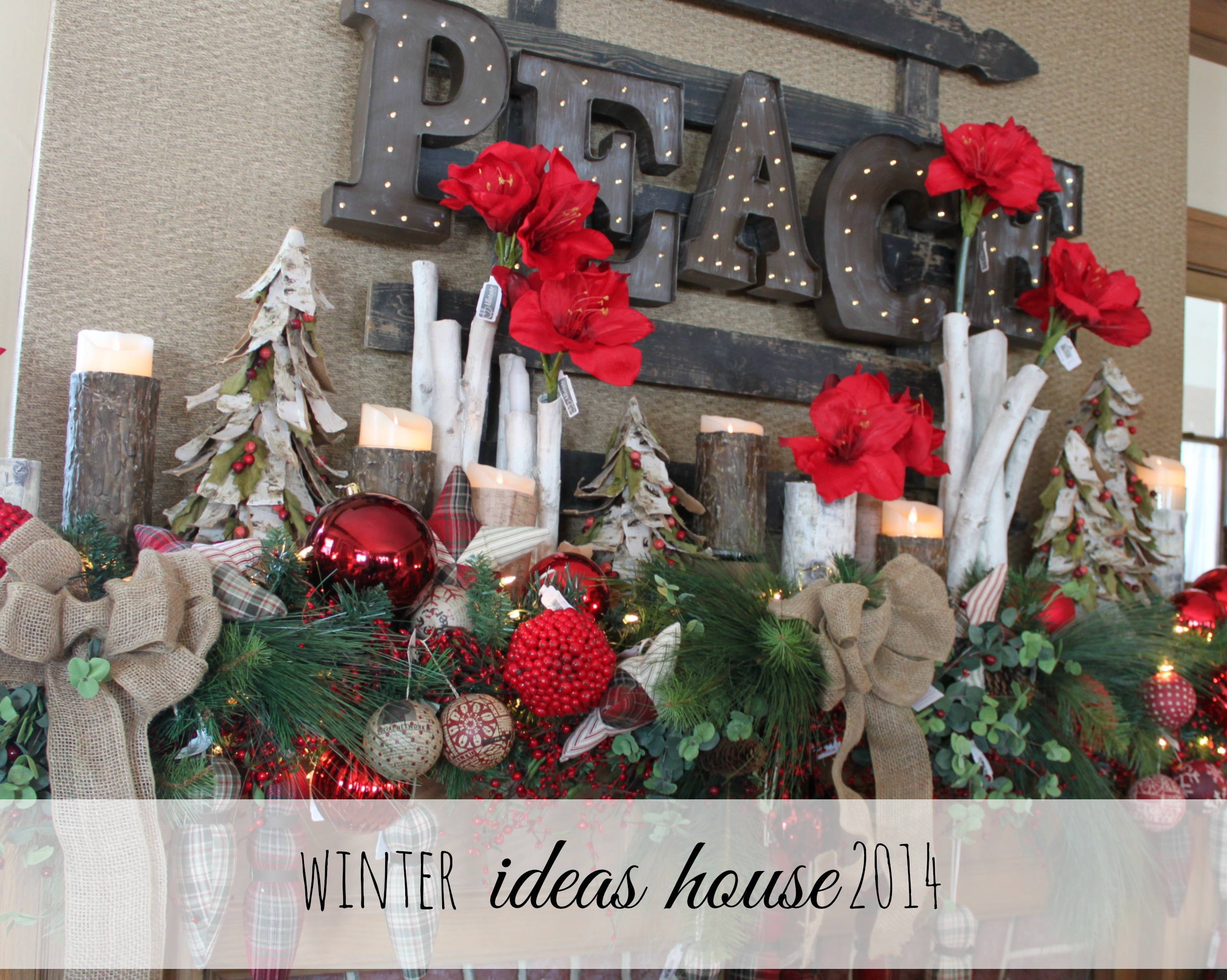 Winter Ideas House 2014