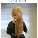 Mommy Confession: Why I Choose to Put my Children on Leashes