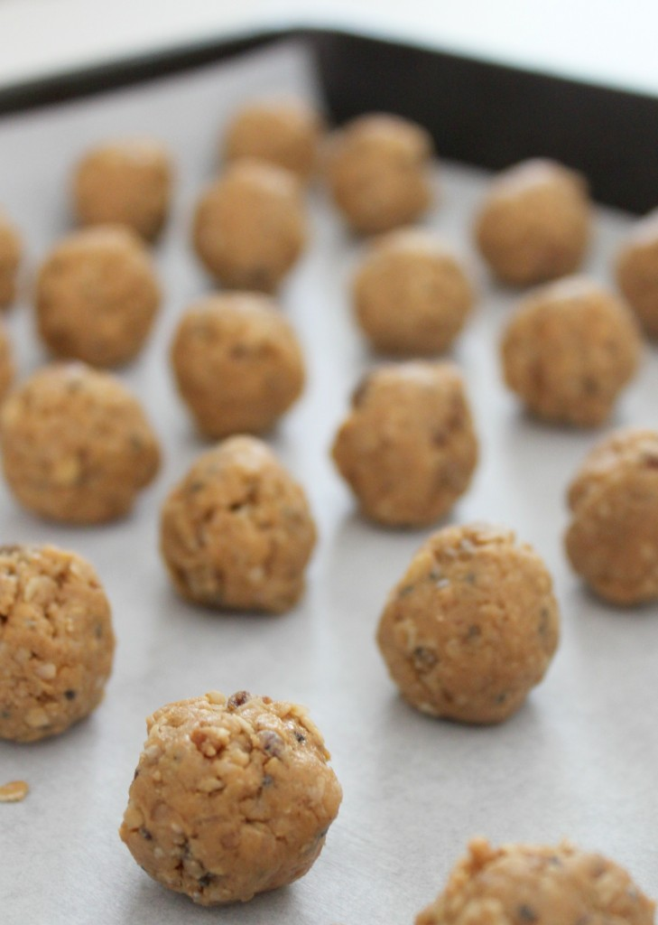 Peanut Butter & Coconut Protein Bites - the perfect bite-sized snack for a quick pick-me-up or to satisfy a craving.