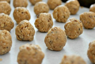 Peanut Butter & Coconut Protein Bites