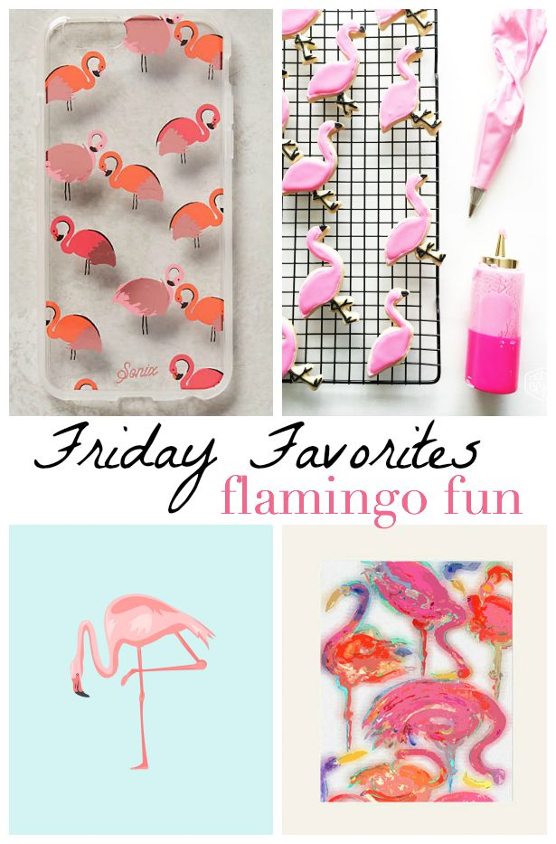 Friday Favorites: Flamingo Fun