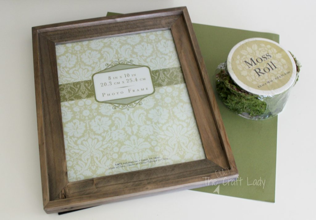 DIY Moss Photo Mat - The Crazy Craft Lady