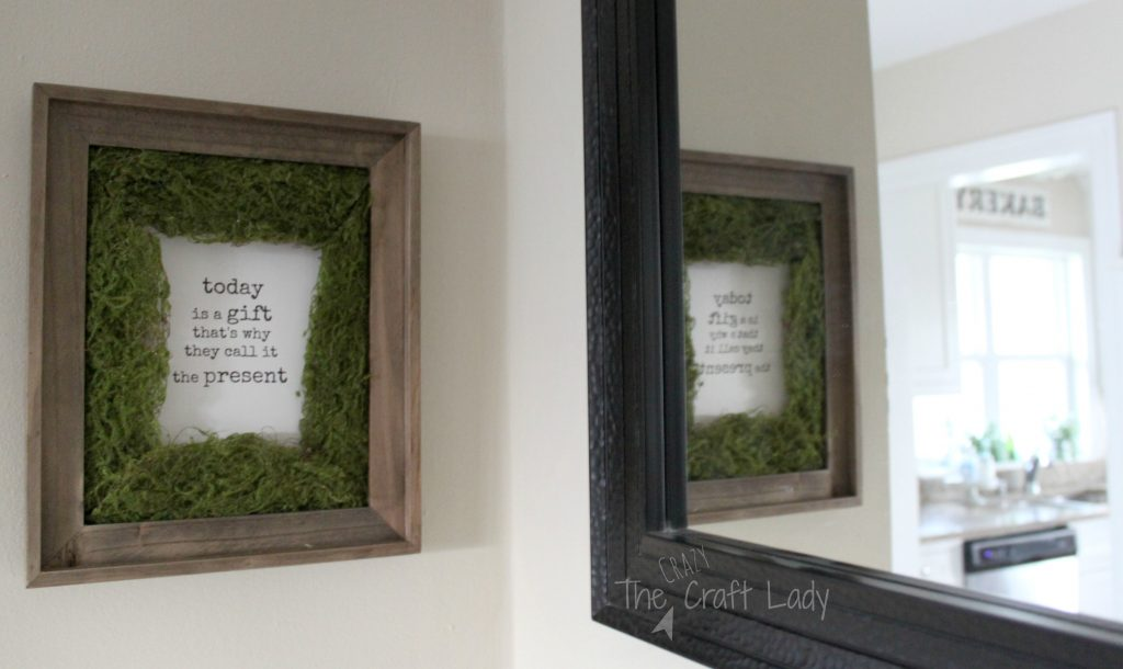 Diy Moss Photo Mat The Crazy Craft Lady