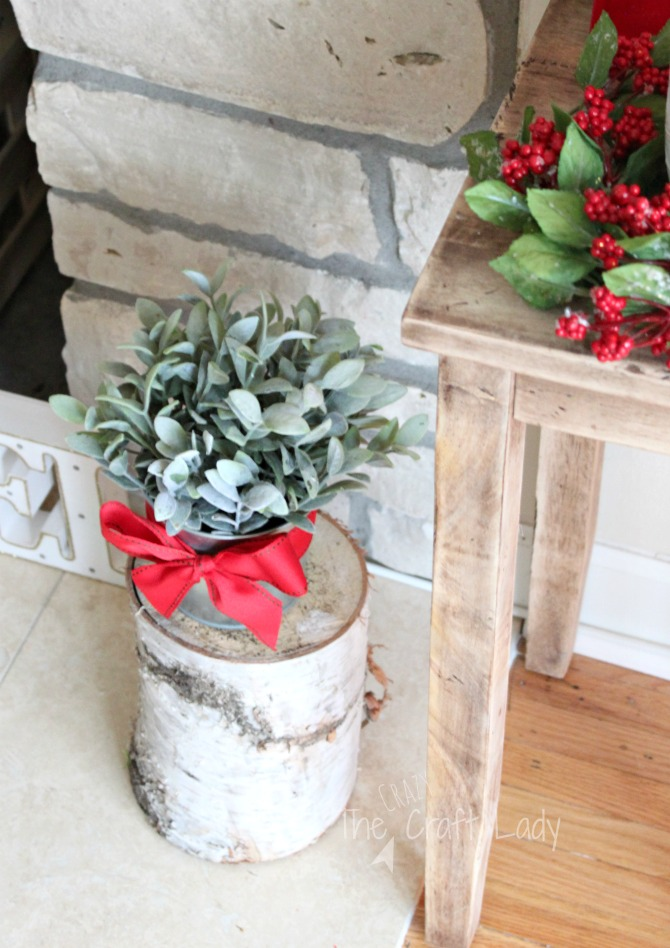 Natural elements and inexpensive winter decor
