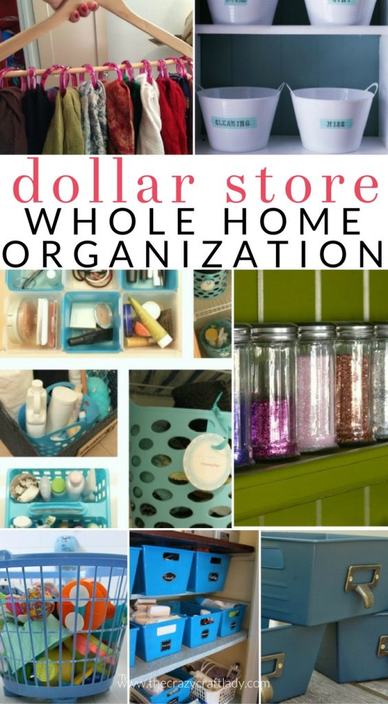 Organize Your Entire House With Dollar Store Items