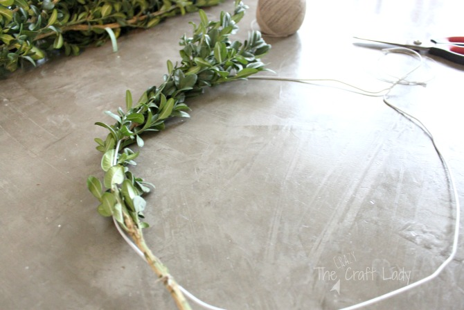 wire hanger wreath form boxwood wreaths
