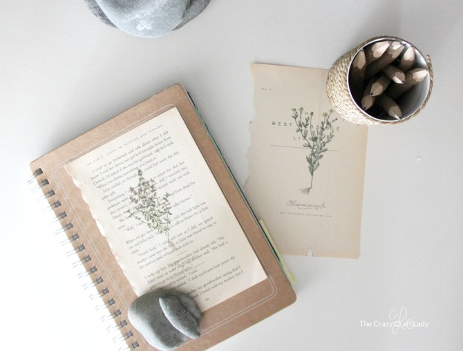 DIY Book Page Vintage Botanical Prints