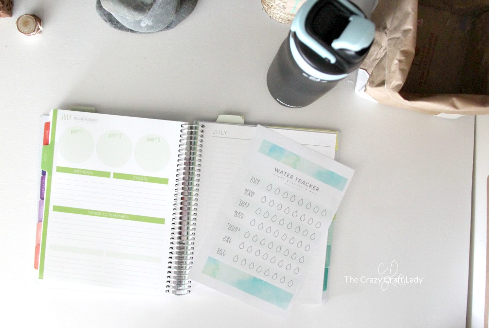 Download and print this FREE Printable Water Tracker to help you stay on track and drink enough water! Use the mini printable in your planner or at your desk and stay hydrated throughout the day!