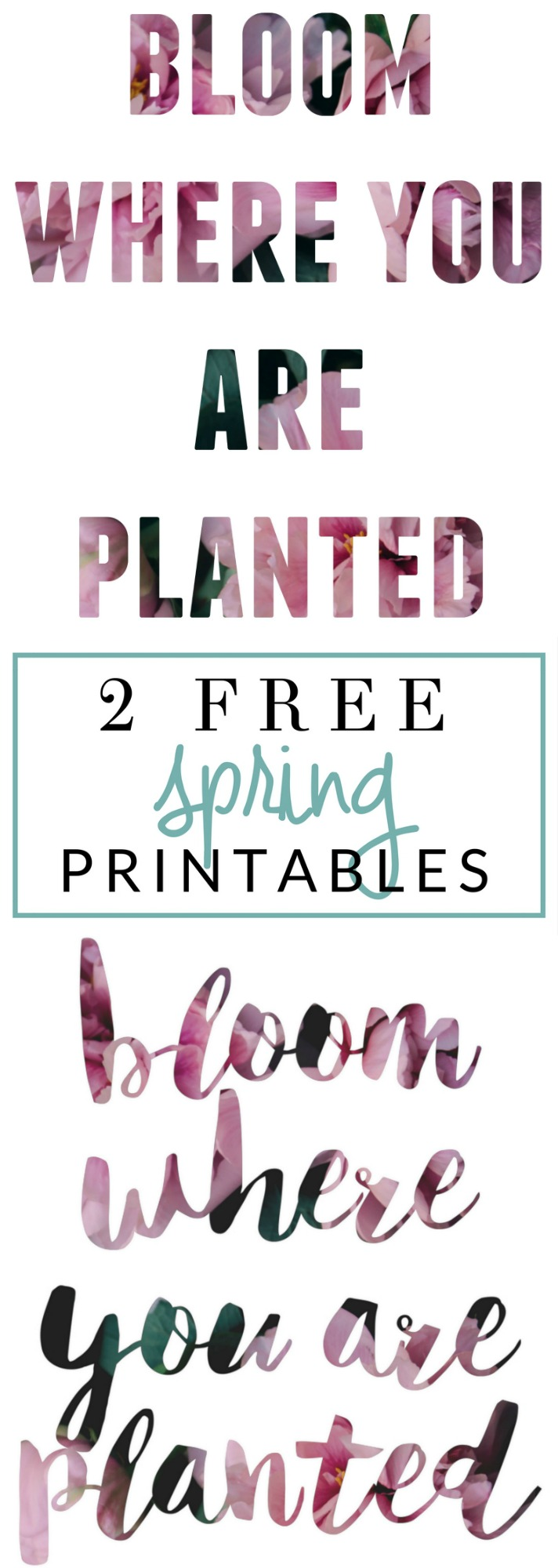 Bloom Where You Are Planted - 2 free printables and a PicMonkey tutorial