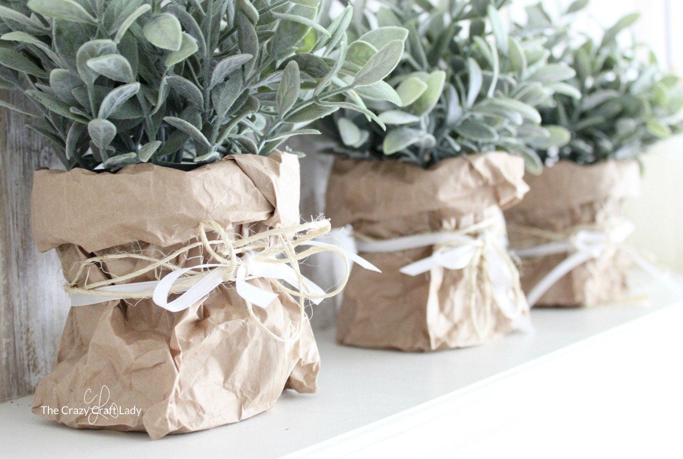 Use a brown bag to make a paper vase for indoor greenery the display indoor greenery in a brown bag paper vase make this farmhouse style plant holder floridaeventfo Gallery
