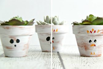Double-Duty Mini Succulent Planter – from Halloween to Thanksgiving