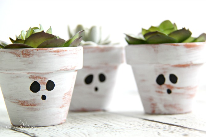 Paint simple ghost clay pots with mini succulents this fall. Use craft paint to add ghost faces to mini terracotta pots for the perfect Halloween craft!