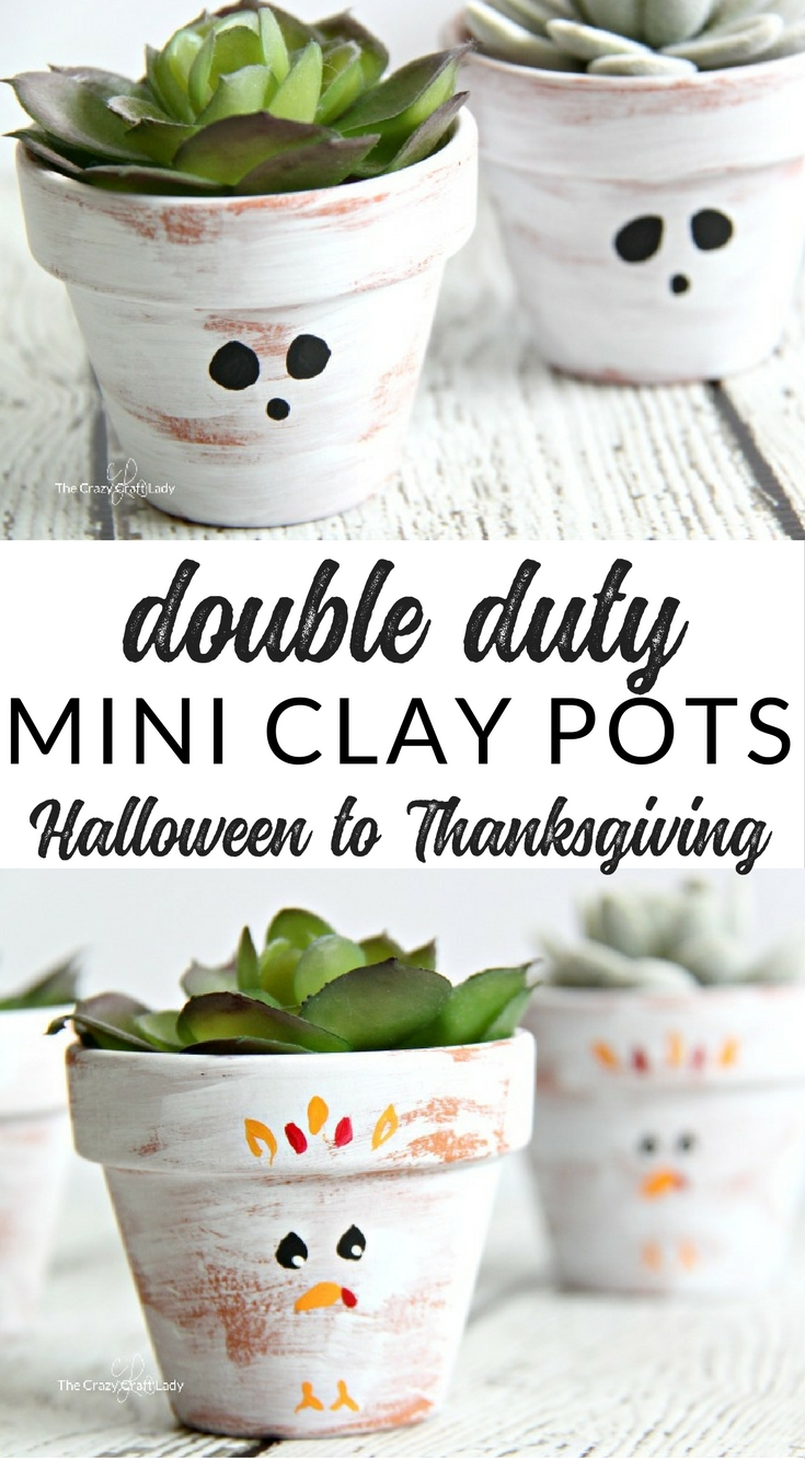 Make a simple mini succulent planter that will do double-duty this fall. Paint both sides of a small terracotta pot for easy seasonal decor that lasts from Halloween through Thanksgiving! Ghost terracotta pots and turkey mini planters.