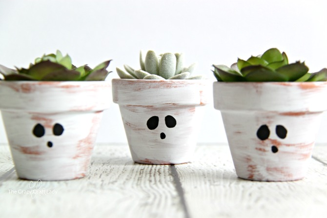 Double duty mini succulent planter from halloween to for Small terracotta pots crafts