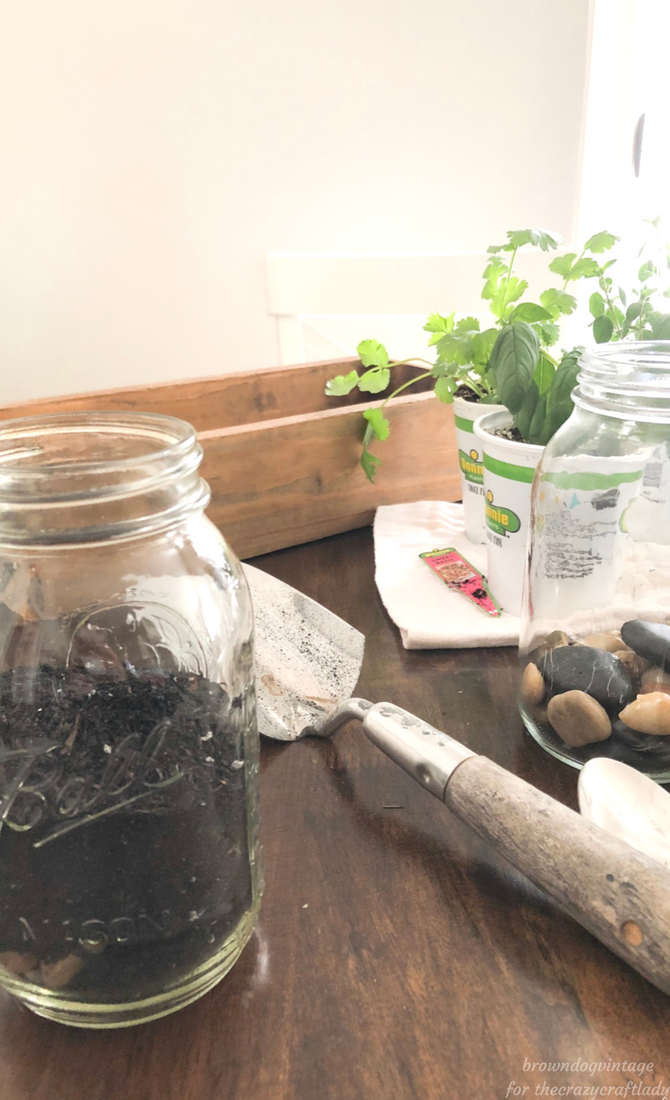 diy herb garden supplies