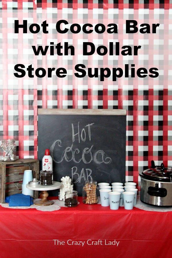 How to throw a fun winter-themed party, complete with a dollar store hot cocoa bar and fun winter kids craft.